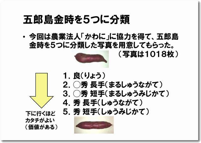 aigorojima02.jpg