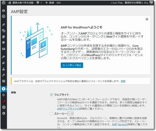 ampwordpress.jpg