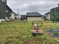 5月23日(日)の朝からマメジンの畑で作業しました。