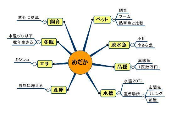 medakakyoukigommap.jpg
