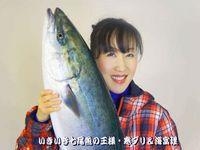 midori-image.jpg