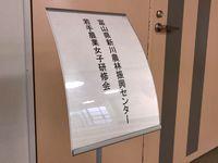 niikawawakatejyosei201802kanban.jpg