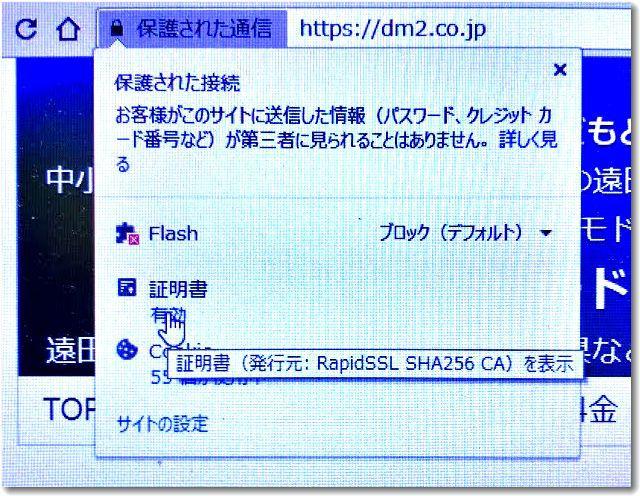rapidssl2020sakura02.jpg