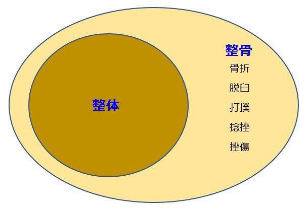 seitaiseikotsukankeisei.jpg