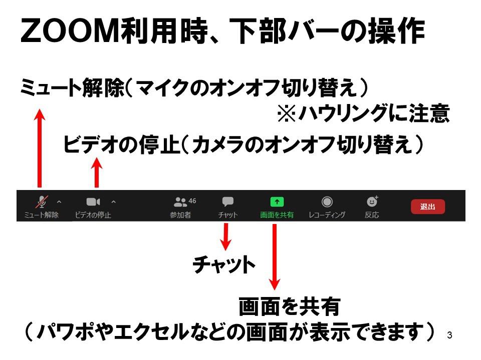 zoom003.jpg