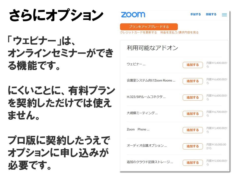 zoom010.jpg